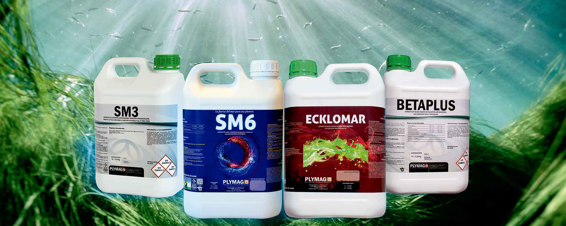 Bioestimulantes a base de algas