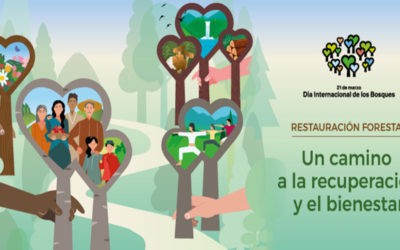 Día Mundial de los Bosques