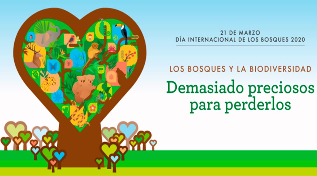 Día de los bosques 2020