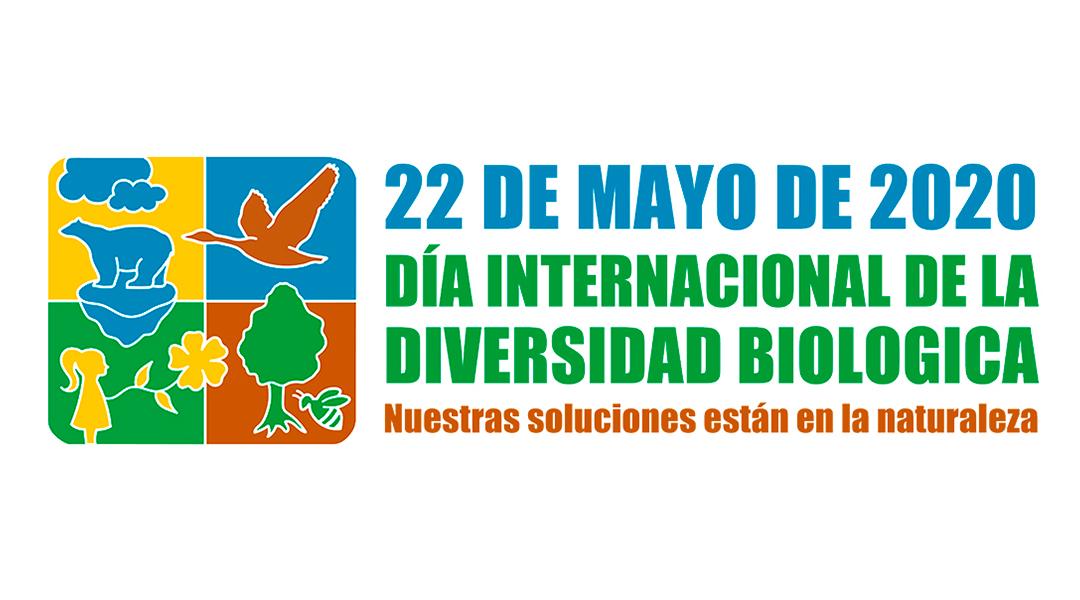 Día de la Biodiversidad 2020