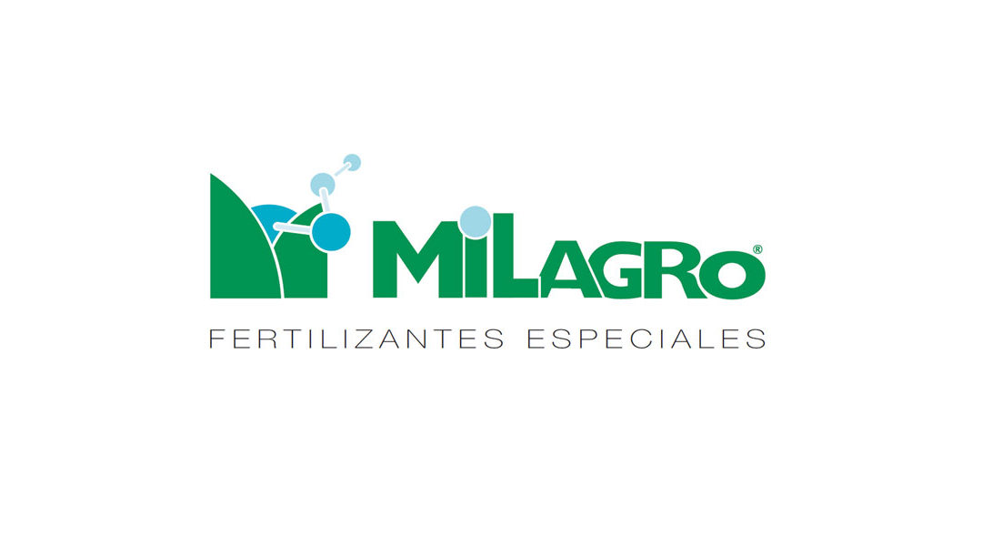Alba Milagro
