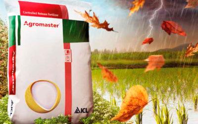 Abonos de liberación controlada Agromaster