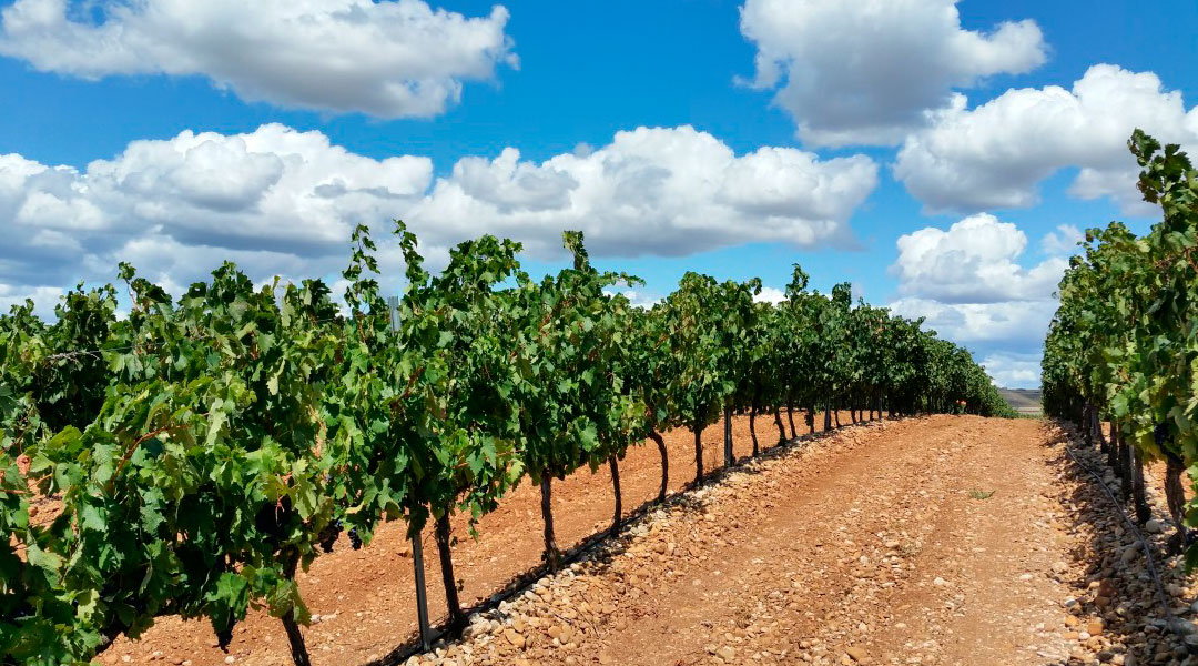 Recogida itinerante de envases agrícolas en La Rioja