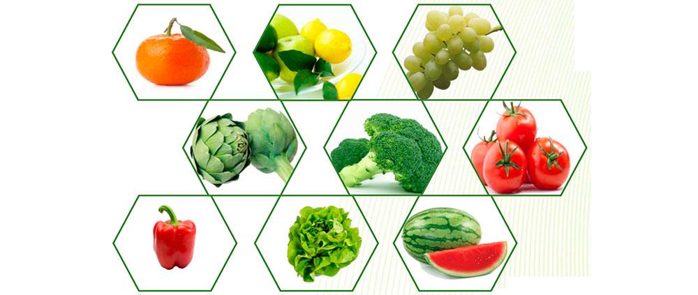Catálogo de fertilizantes New Veg
