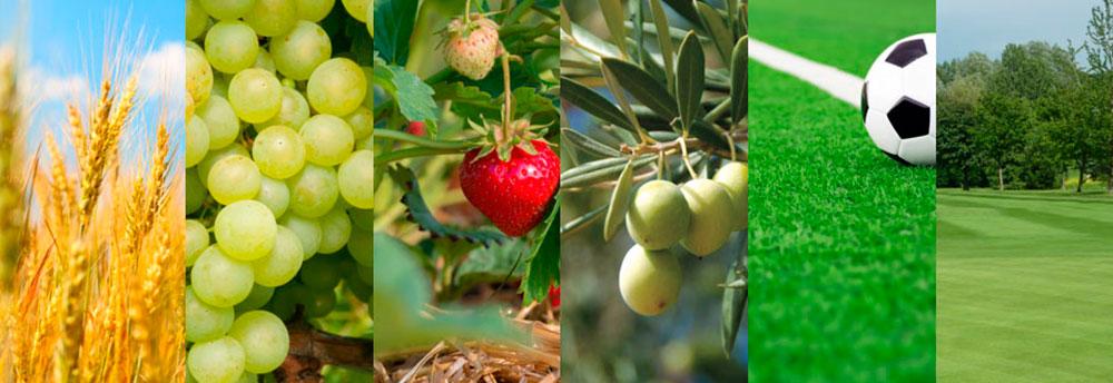 Bioestimulantes Olmix Plant Care
