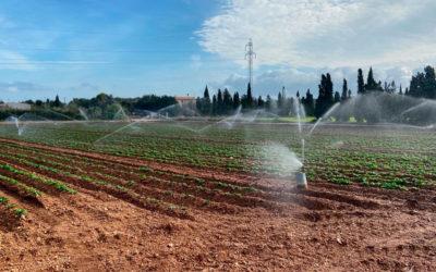 Los fabricantes asociados a AEVAE pueden vender en Baleares
