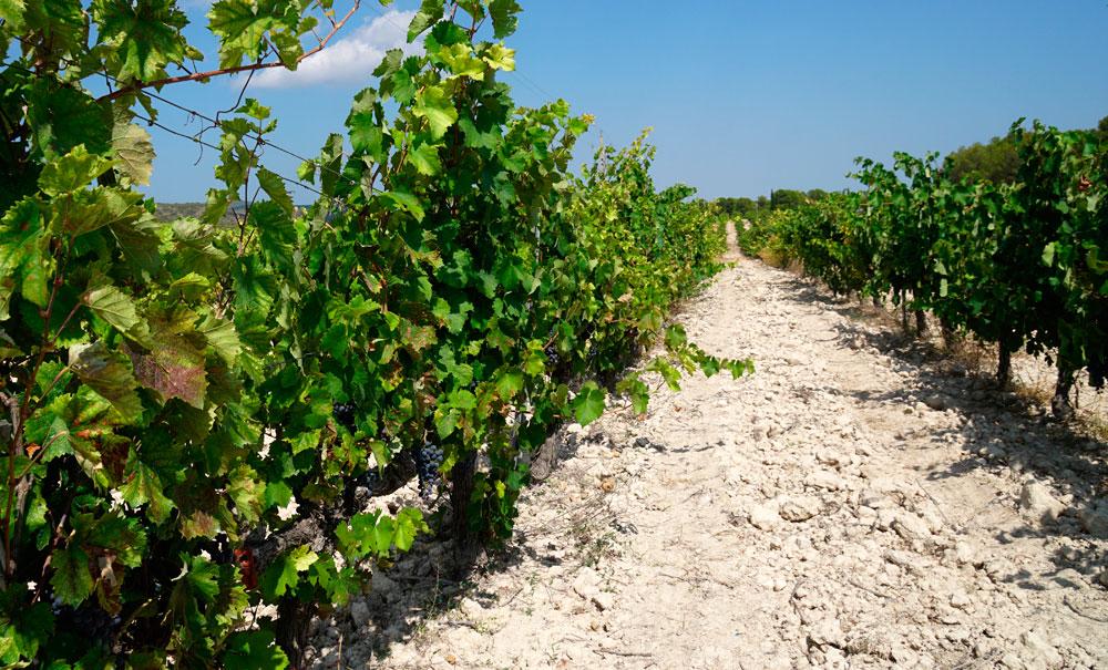 Recogida itinerante de envases agrarios en La Rioja