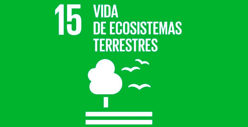Vida de ecosistemas
